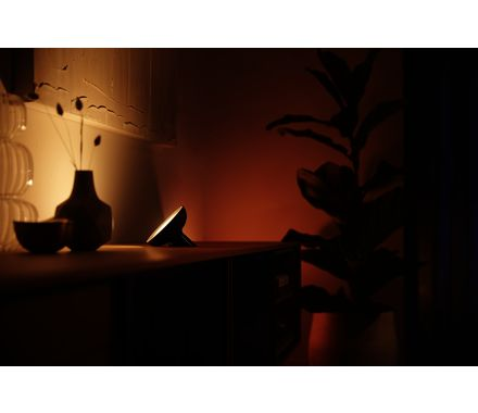 Philips Hue LivingColors Bloom Conn. Ext. Kit 120lm