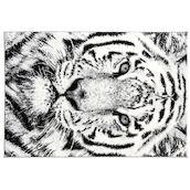 Teppich Flash Wild 120x170cm Tiger